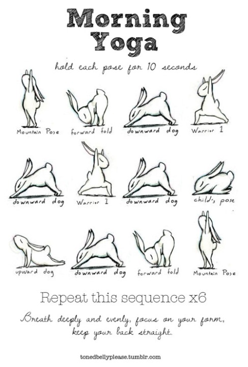 Bunny Yoga and Breathing