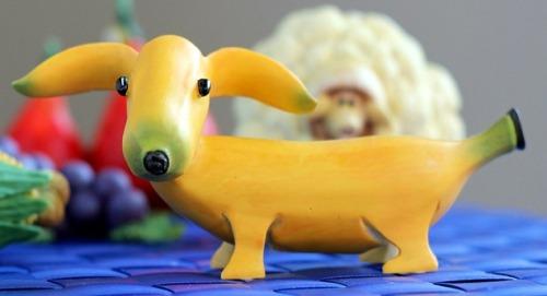 bananna dog