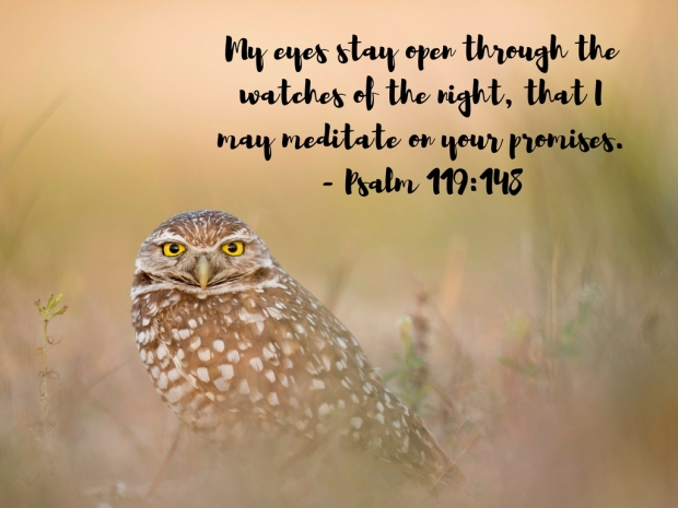 My eyes stay open through the watches of the night, that I may meditate on your promises.