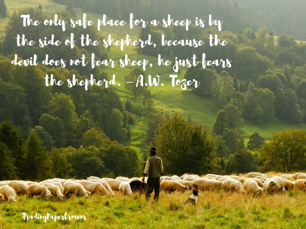 The only safe place for a sheep is by the side of the shepherd, because the devil does not fear sheep, he just fears the shepherd. – A.W. Tozer